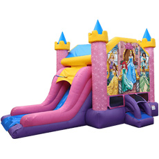 Disney Princess Deluxe Combo Slide